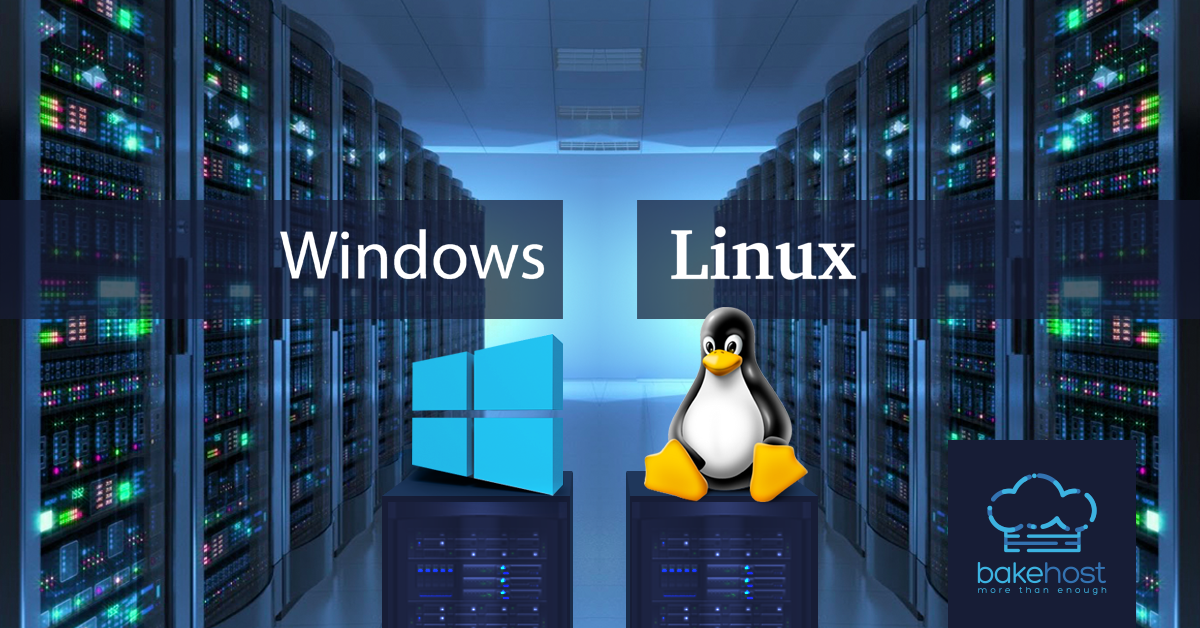 Differences Between Linux and Windows Servers